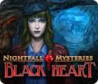Скачать бесплатную флеш игру Nightfall Mysteries: Black Heart